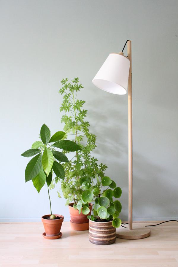 Muuto Pull lamp met avocado-, citroen- en pileaplant tegen grijsgroene muur - via Accessorize your Home