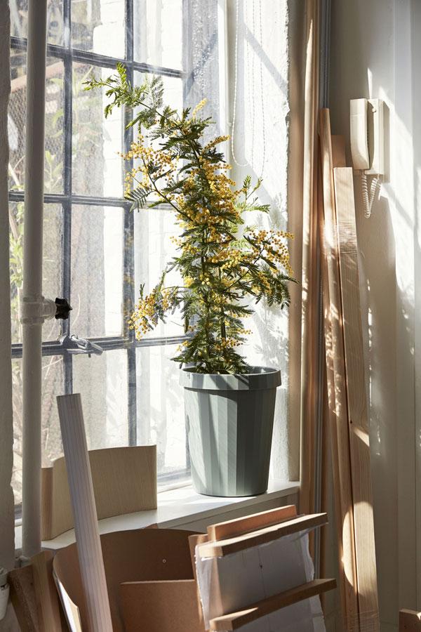 Vergrijsd groene prullenbak van HAY met plant op zonovergoten vensterbank - via Accessorize your Home